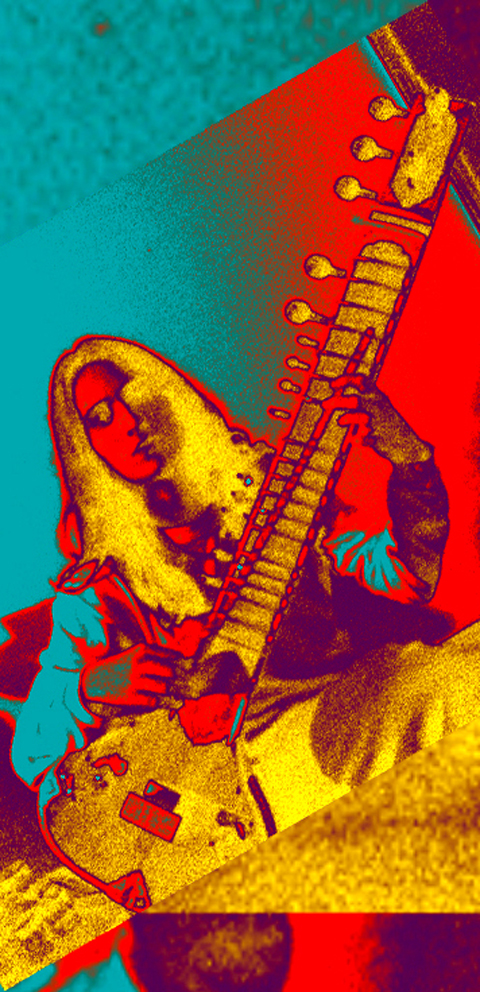 Artistic photo with the sitar